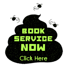 Book Service Now Button